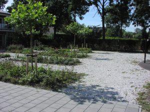Tuin-met-paden-van-kleischelpen-Groenhof